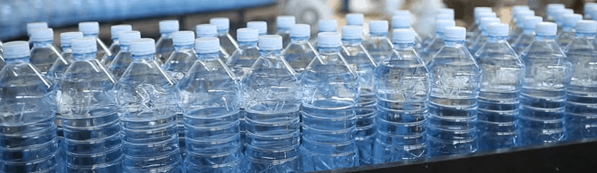 Water bottle plant
